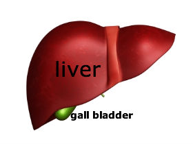 homepathic treatment of gallstones or gallbladder stones without surgery image